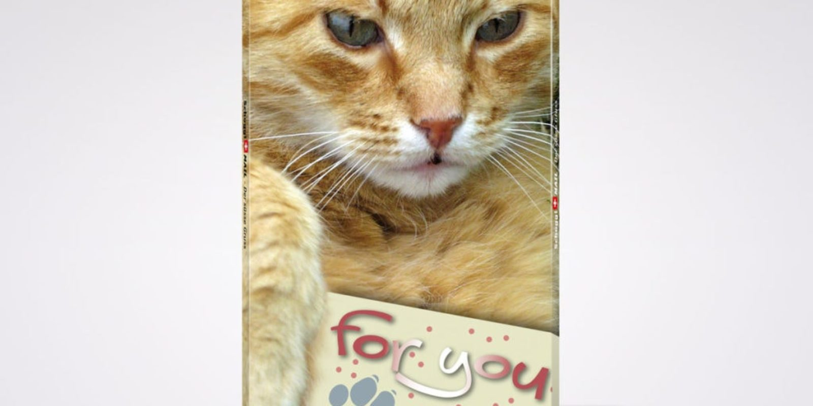 1137813-Katze-For-You-Front