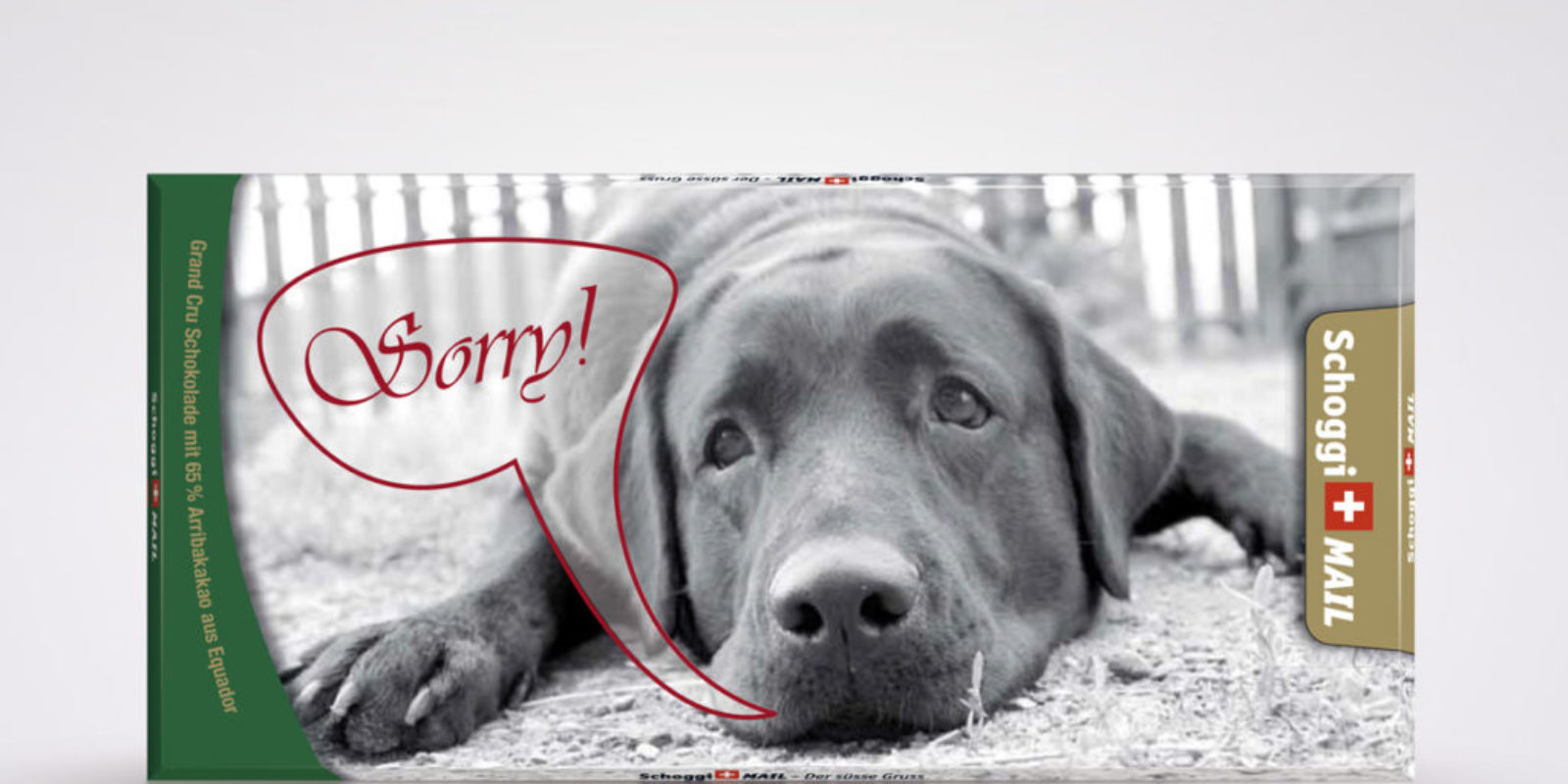 Sorry Hund